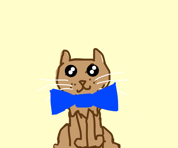 Kitten wearing a blue ribbon