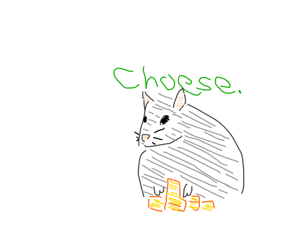 Rat: Master of the cheese