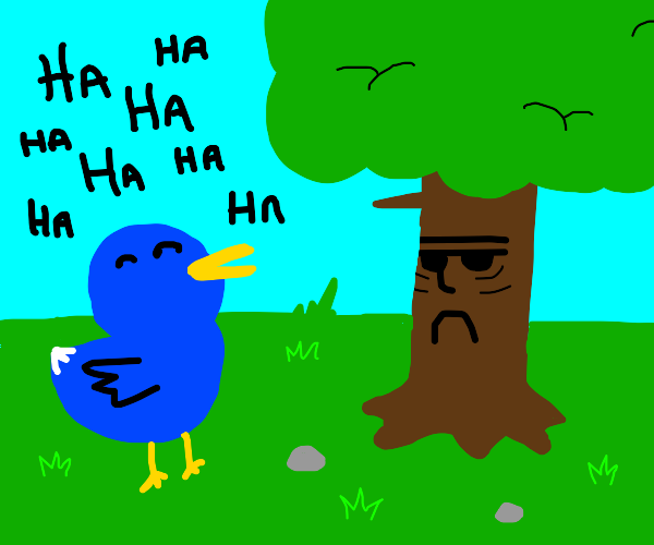 Bird annoying a tree with laughter