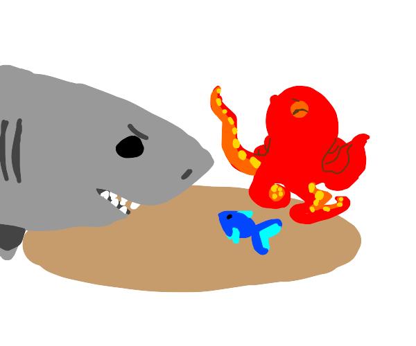 Happy octopus mediates shark/fish dispute
