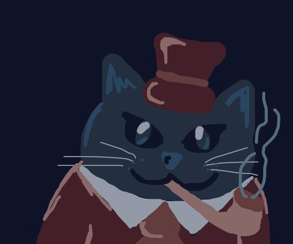 Rearded cat