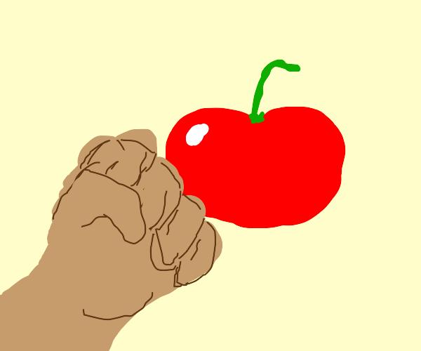 tomato vibe check