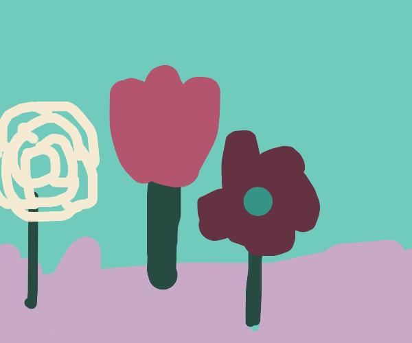 Flowers growing from purple dirt