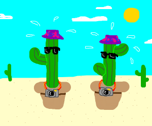 Two cactuses on vacation over heating