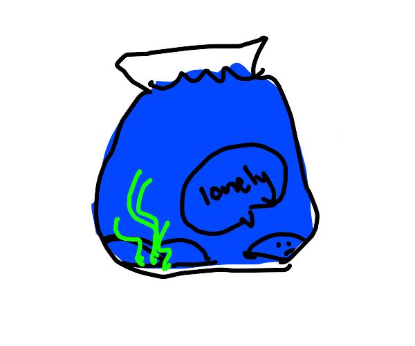 Rock in fish tank is sad cause no fish. :(