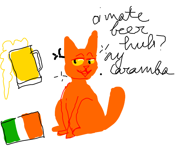 A cat goes to Ireland