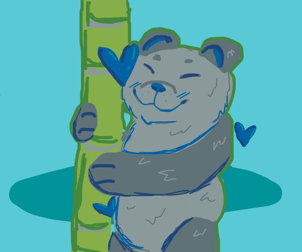 Panda loves bamboo. And I do mean love.