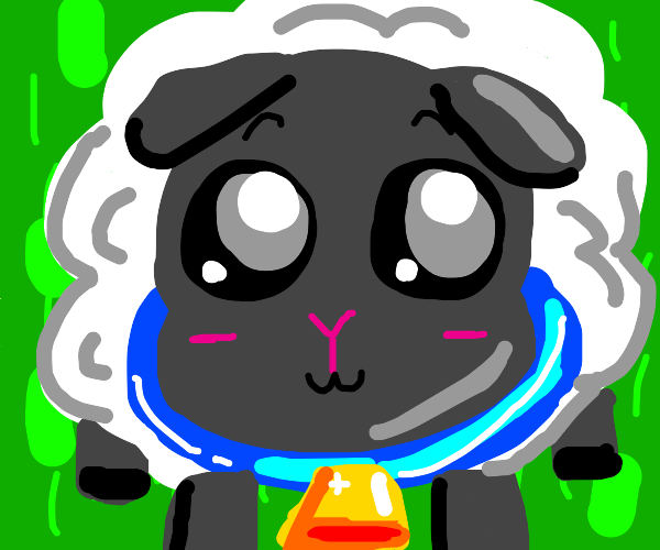 sheep with bell collar