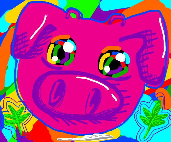 Pig on drugs