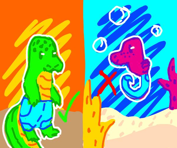 alligators can wear pants, not seahorses