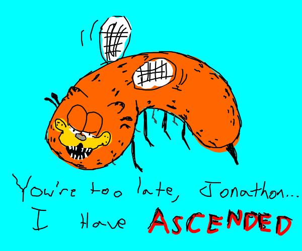 Garfield Flies