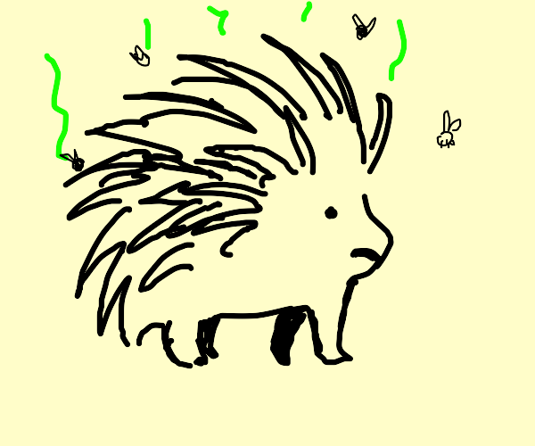 Smelly Porcupine