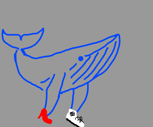 Shoe whale