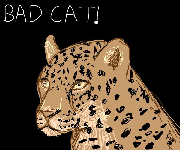 Bad Jaguar