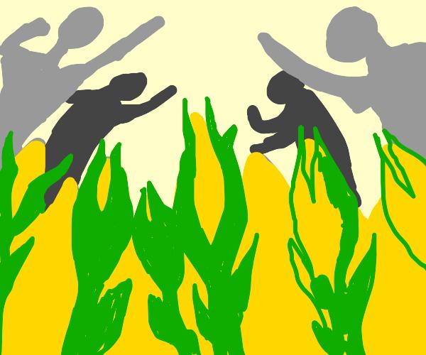 War for corn