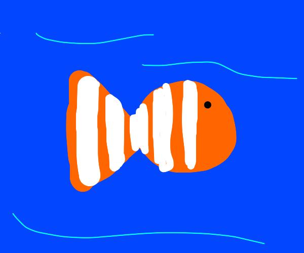Underwater Clownfish