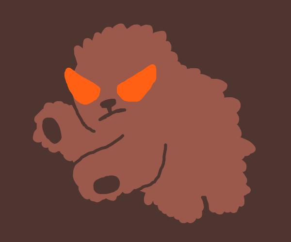 angry bear!