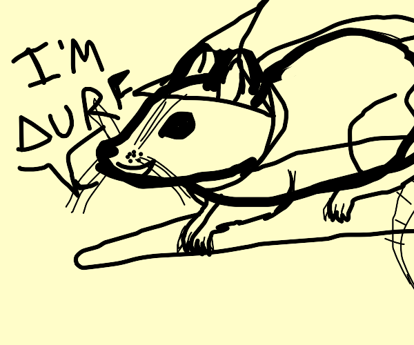 witch rat says he's a durf
