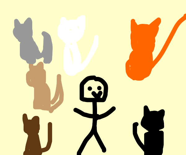 man surrounded by cats