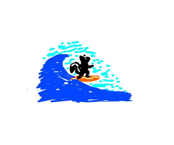 surfing skunk