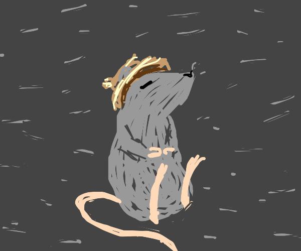 rat with straw hat