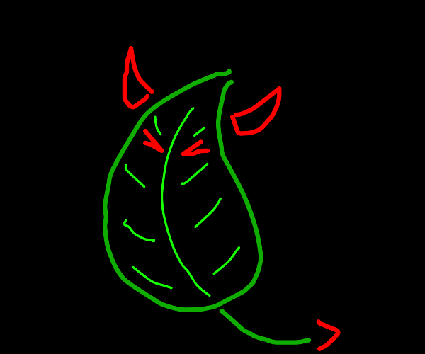 Devil leaf