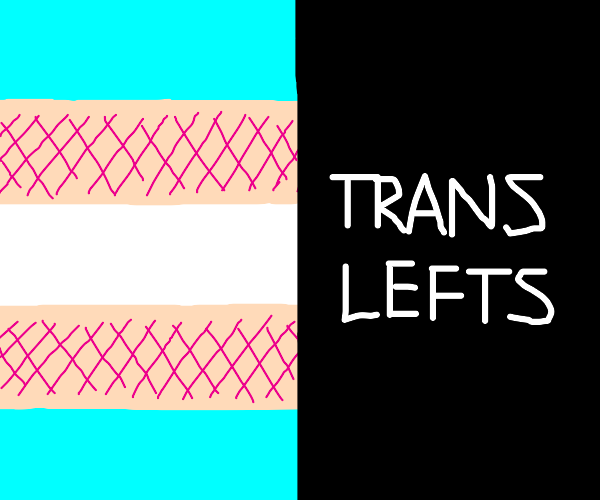 Trans rights and trans lefts