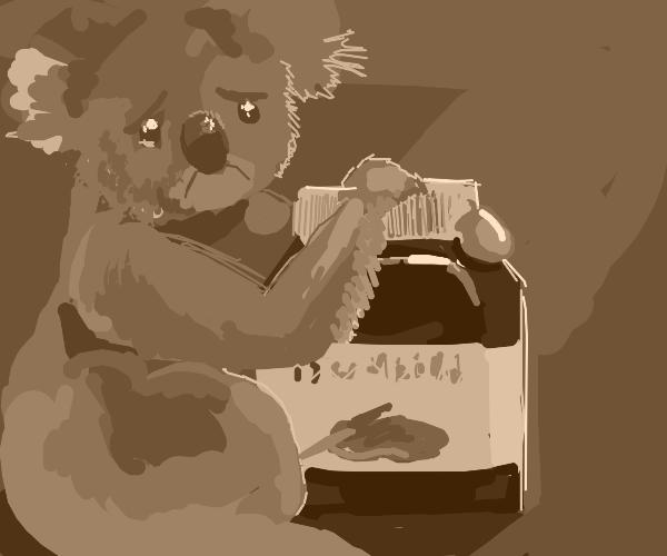 Koala can't open jar of Nutella