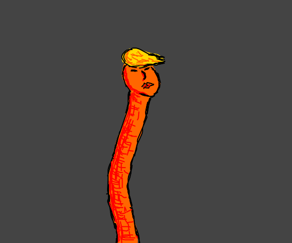Donald Trump has a long neck