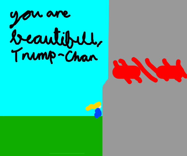 Girl trump-chan is in LOVE with the wall