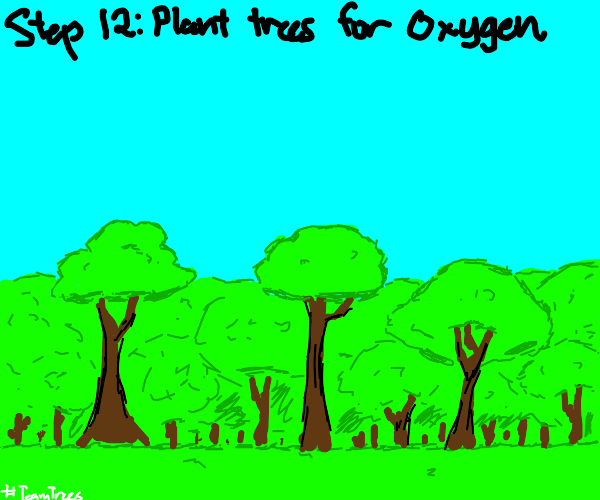 Step 11, there is no oxegen there