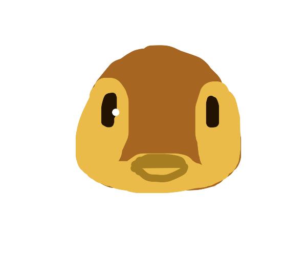 Molly (Animal Crossing)