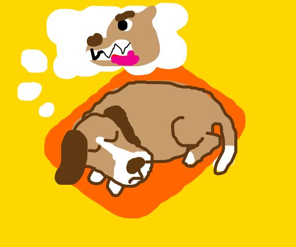 Dog dreams of angry dog