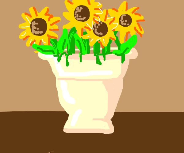 Flowers inn a vase