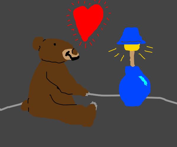 Bear likes lamps