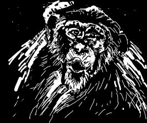 Insane chimpanzee