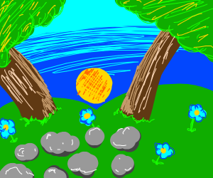 a forest with flowers and some rocks