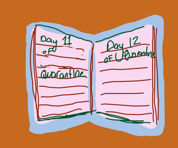 Quarantine diary