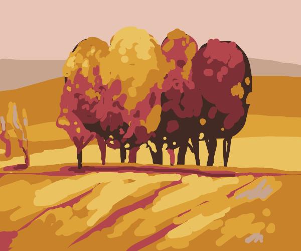 A row of autumn trees