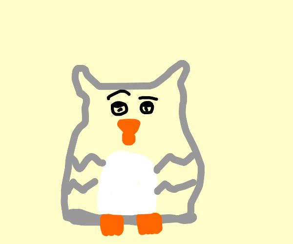 confused furby-owl