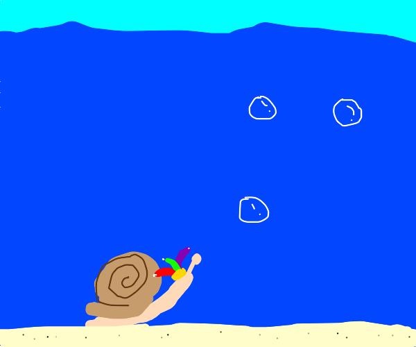 A jester snail under the sea