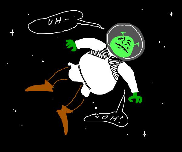 Shrek in Space