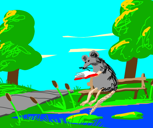 Rat reads a book while at a park w/ a pond
