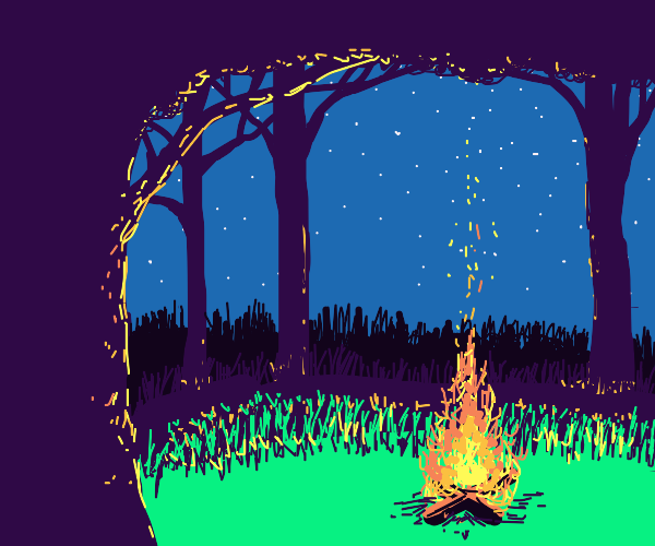 campfire in the forest under clear night sky