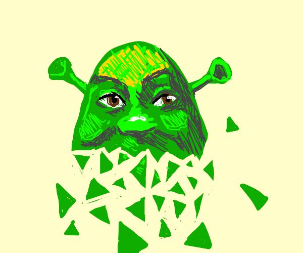 Shrek in Bits
