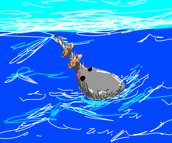 Narwhale with cookies on its tusk