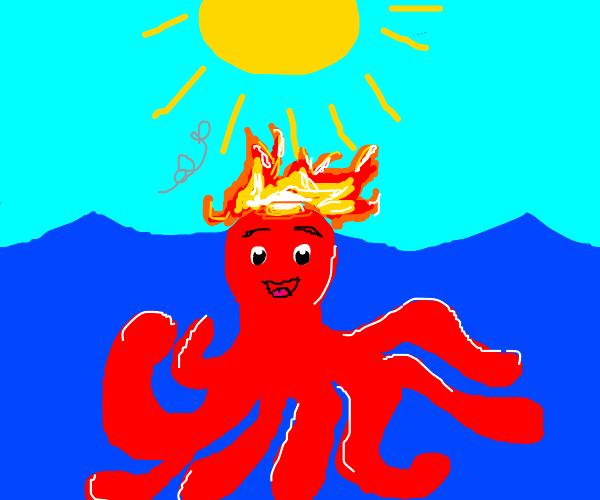 Happy octopus burning in the sun