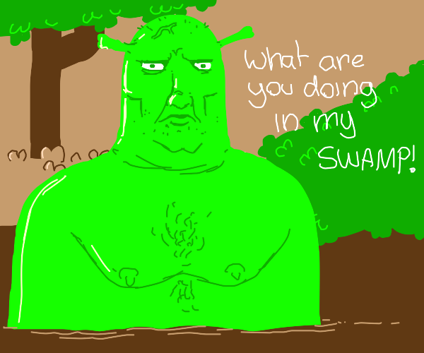 "Shrek saying ""What are you doing in my swamp"""
