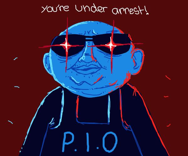 The PIO Police