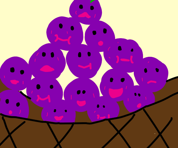 Purple grapes in a basket